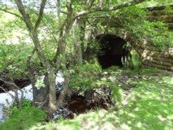 Old Bridge and Stream