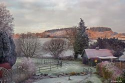 Early morning frost, Hollybrook, Shillingstone.