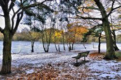 Frozen Kingsmere View With Seat Wallpaper