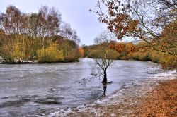 Winter View of Kingsmere