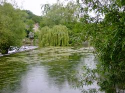 River Teme in summer