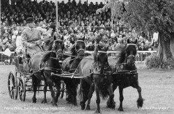 HRH Prnce Phillip, Duke of Edinburgh, Badminton, Gloucestershire 1999