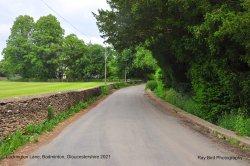 Luckington Lane, Badminton, Gloucestershire 2021