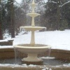 Botanical Gardens fountain 24th Feb 2005