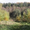 Autumn at Otterhead. The Blackdown hills in Somerset -