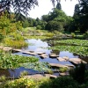 University Botanic Gardens, Cambridge