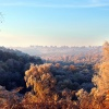 Frosty morning, Sherbrook Valley, Cannock Chase