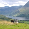 The Buttermere in the Lake District, Cumbria - AUGUST 2004