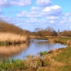 Stockbridge Marsh, Hampshire