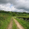 Devon Countryside, near Axminster