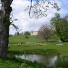 A picture taken across the lake looking up at Cusworth Hall, Nr Doncaster