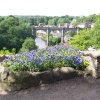 Beautiful Knaresborough in June. Knaresborough, North Yorkshire