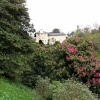 Glendurgan Garden, Nr Helford, Cornwall. - View towards the house, still privately owned.