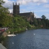 Worcester Cathedral and swans along the river Severn, Worcester