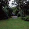 A picture of Trewithen Gardens - Cornwall