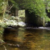 The river Fowey, running down to Golitha falls near St Neot, Bodmin Moor. Cornwall. September 2006.