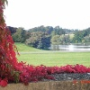 Blenheim Palace grounds