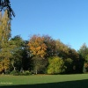 Rear lawn and woods in autumn at Holland Park, London.