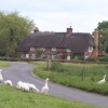 A cottage in Breamore. Hampshire  - (Photo taken in June 2005)