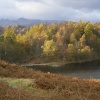 Autumn Tarn hows, English Lakes. October 2006. Canon Powershot 400