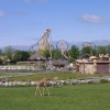Flamingo Land Theme Park & Zoo, Kirby Misperton, North Yorkshire.
