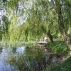 The village pond, Irby, Lincolnshire