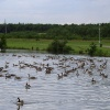 Rother Valley Country Park in South Yorkshire