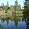 Reflections in the Lake at Sheffield Park, Uckfield, East Sussex