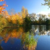 Thatcham Angling Lakes, Berkshire
