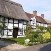 Thatched and Timbered Beauty