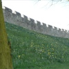 York City Walls in Spring