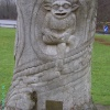 Beech Tree Carving