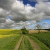 Footpath from Risby to Walkington, East Riding of Yorkshire