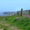 Cliff path, Bempton, East Riding of Yorkshire
