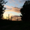 Sunset at the gate