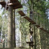 For the Adventurous, Grizedale Forest, Hawkshead, Cumbria