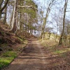 Track near the ford, Eggleston, County Durham