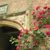 Roses over the main entrance archway at Sissinghurst castle, Kent