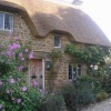 Great Tew cottage and flowers