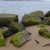 Rocks near Sea Palling