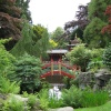 The Chinese Garden at Biddulph Grange