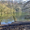 A lake at Roundhay park.
