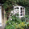 Pretty Cottage Garden