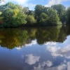 Penns Hall Lake, Walmley