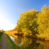 Autumn Canal path