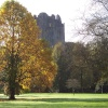 Blarney Castle Behind the Fall Foliage