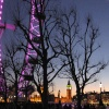 The London Eye and Big Ben