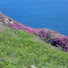 Visit to Lundy Island
