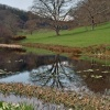 After the rain: Spring in Stourhead Garden