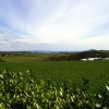 Looking out from Heligan towards Mevagissey.